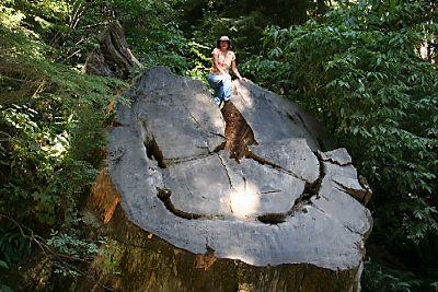 Redwood Natl Park - Wednesday 029web
