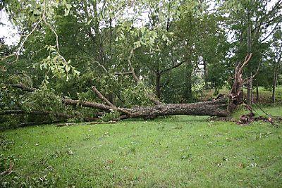 Hurricane Ike 003web