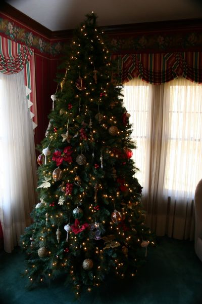 Christmas Start 003web