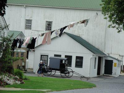 Web Amish 03 013 (800x600)