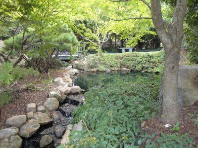Web Ginter Gardens 077 (800x600)