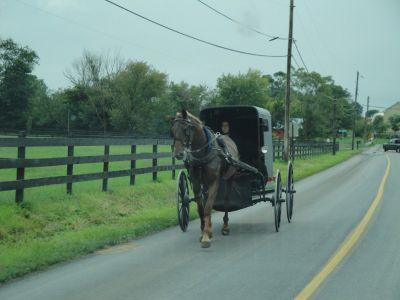 Web Amish 03 024 (800x600)