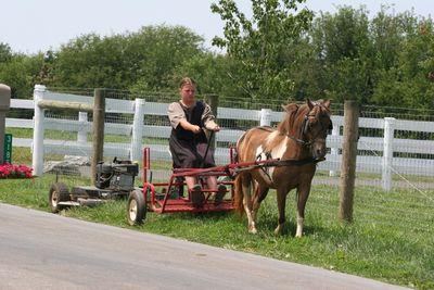 2010-07-30 - Pa Amish 2 070 web