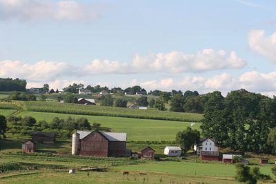 2010-07-25 - Amish 064 web