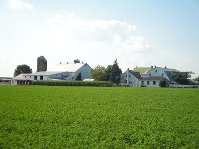 2010-07-30 - Pa Amish 023 web