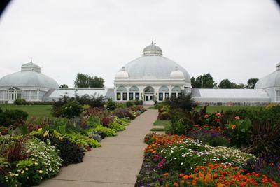 2010-08-15 - Buffalo Gardens 057 web