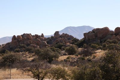 2011-01-11 - Chiricahua 003 - web