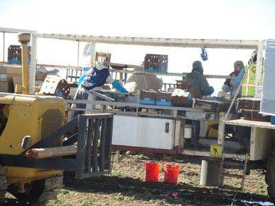 2010-02-05 - Yuma 1 028 web