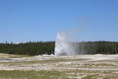 2011-07-27 - YNP01 074 web