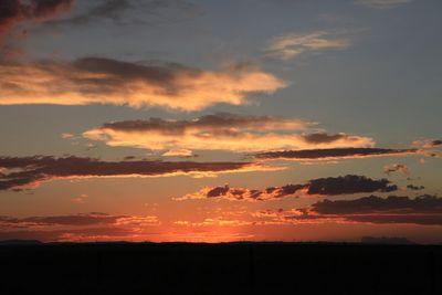 2011-07-01 - Cheyenne 202 web